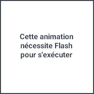 Flash non disponible